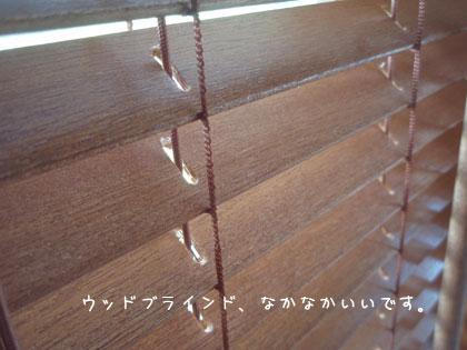 091204-6.jpg