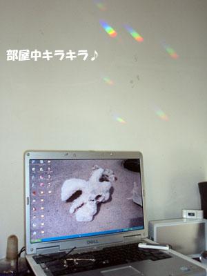 20080428-2.jpg