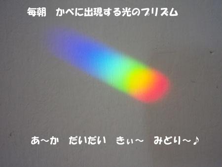 20080428-3.jpg