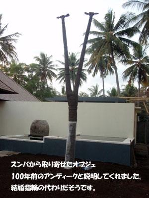 20080622-6.jpg