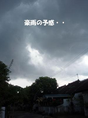 20081008-1.jpg