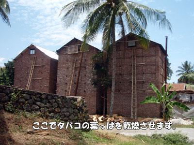 20081013-5.jpg