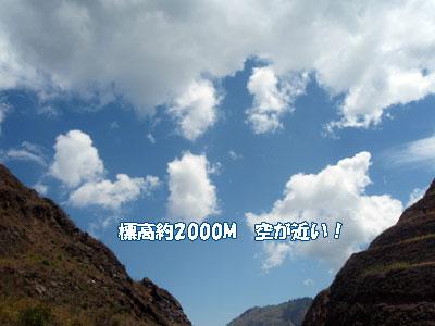 20081014-1.jpg