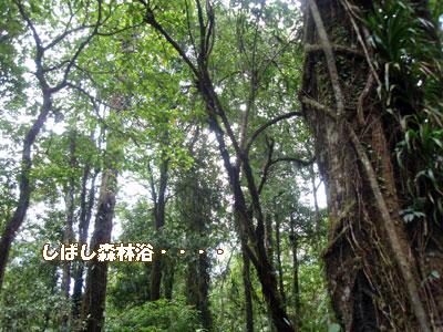 20081014-2.jpg
