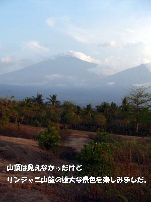 20081019-11.jpg