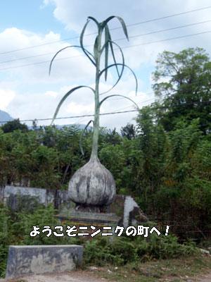 20081019-4.jpg