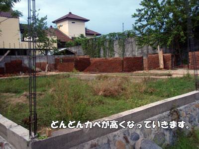 20081217-6.jpg