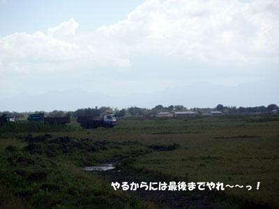 2008529-2.jpg