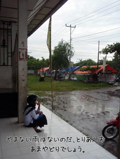 20090220-5.jpg