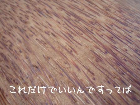 20090224-5.jpg