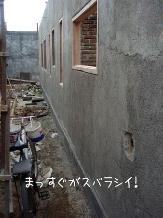 20090227-1.jpg