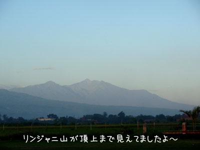 20090323-2.jpg
