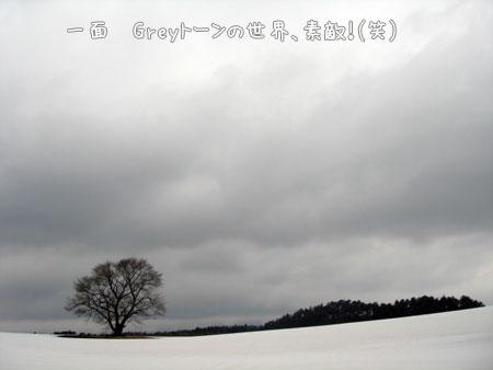 20090327-13.jpg