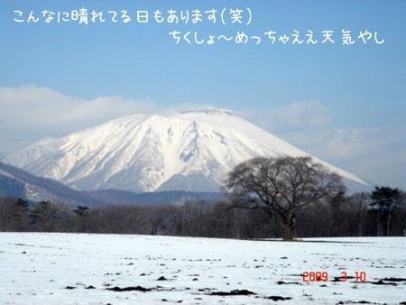 20090327-17.jpg