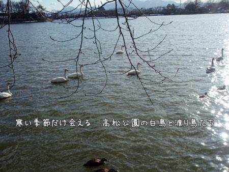 20090327-18.jpg