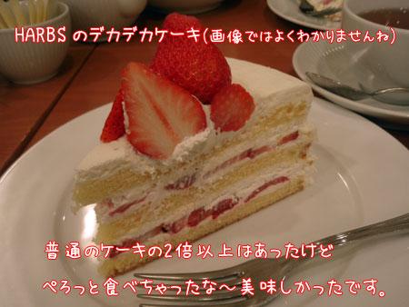 20090329-16.jpg