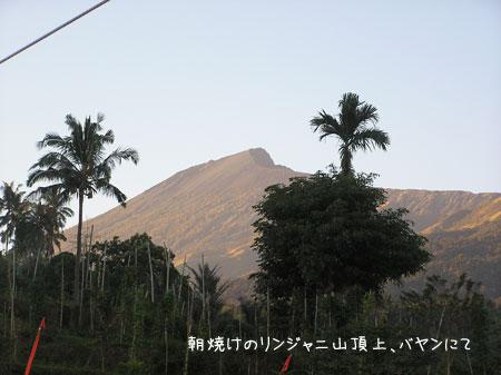 20090424-5.jpg