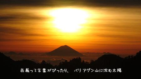 20090704-9.jpg