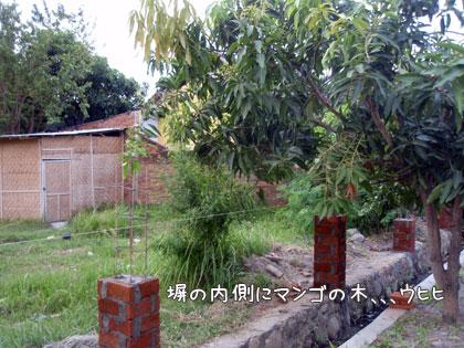 200908120-4.jpg