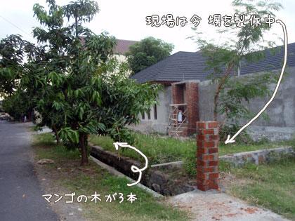 20090821-2.jpg