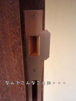 20091014-3.jpg