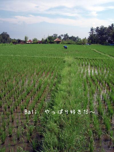 20100221-5.jpg