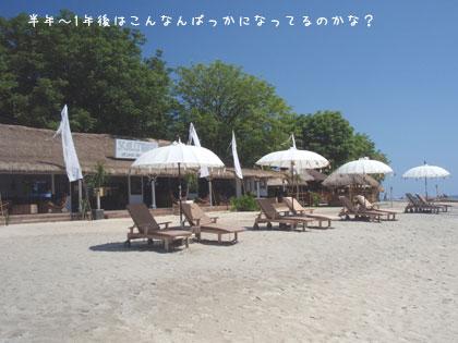 20100323-5.jpg