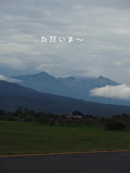 20100518-1.jpg