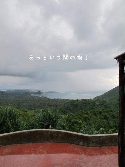 20100523-5.jpg
