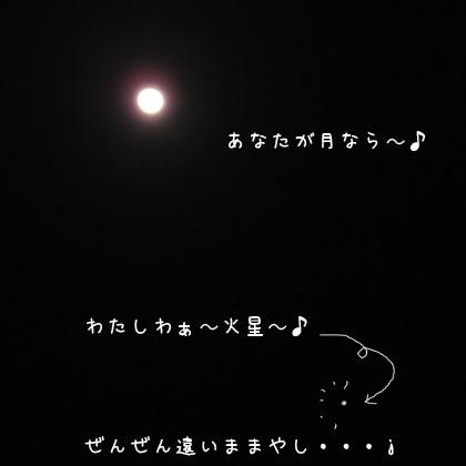 20100827-2.jpg