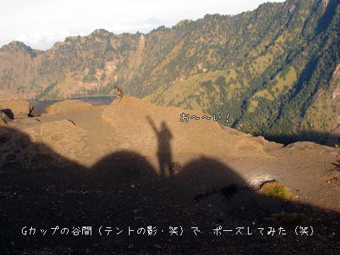 20101010-10.jpg