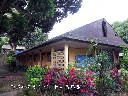 20101024-6.jpg