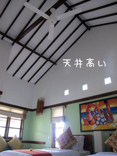 20101213-4.jpg