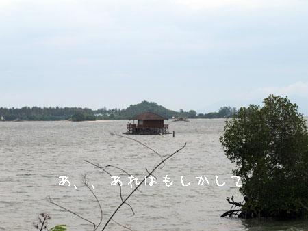 20101219-1.jpg