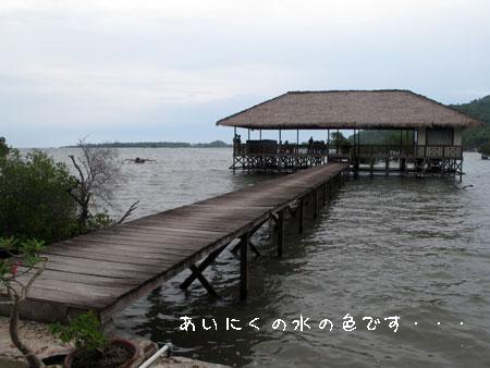20101219-4.jpg