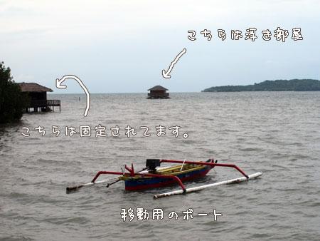 20101219-5.jpg