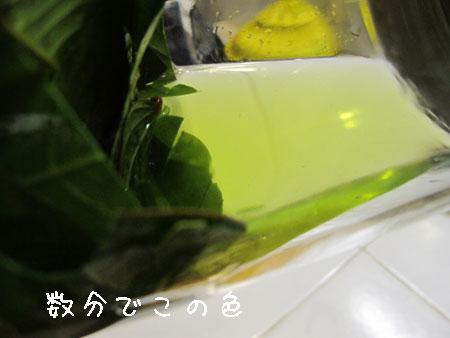201101224-3.jpg