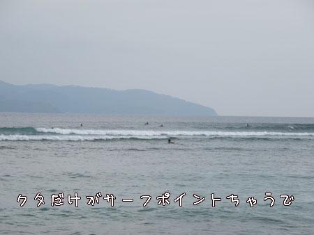 20110217-1.jpg