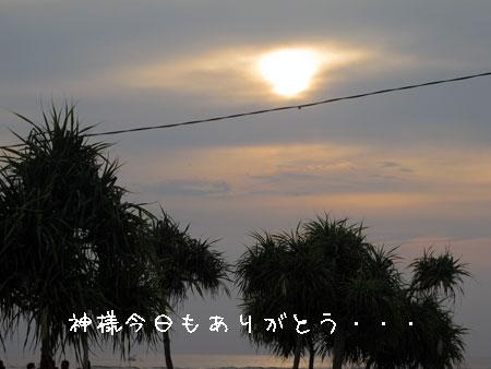 20110217-9.jpg