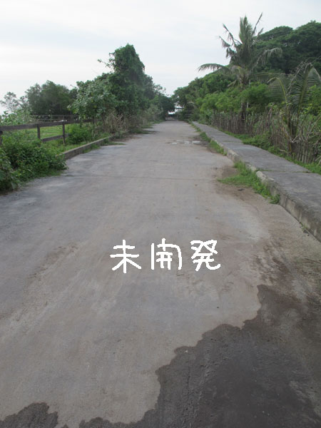 20110219-2.jpg