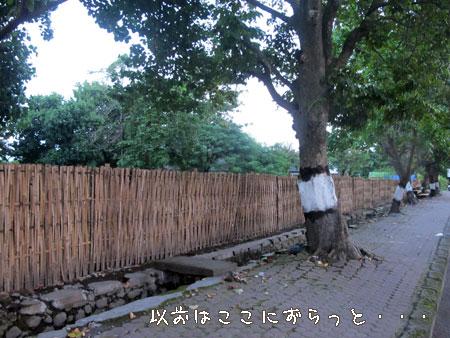 20110426-3.jpg