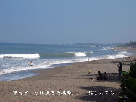 20110514-3.jpg