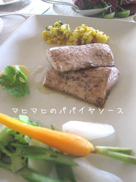 20110515.jpg
