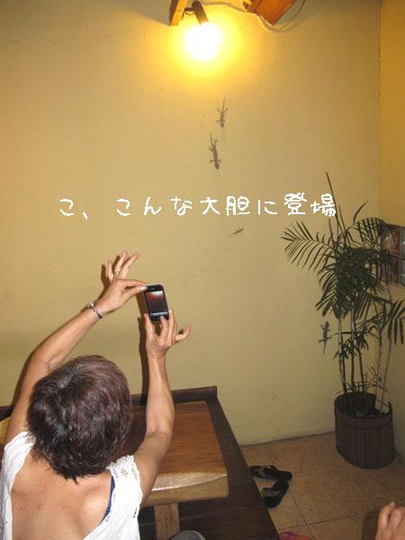 20110516-1.jpg
