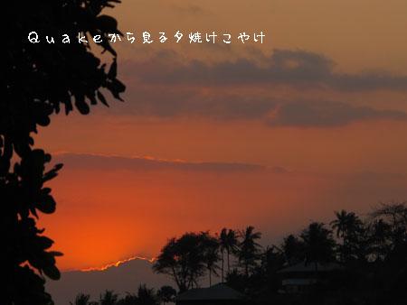 20110905-6.jpg
