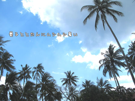 20110908-1.jpg