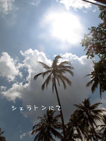 20110908-4.jpg