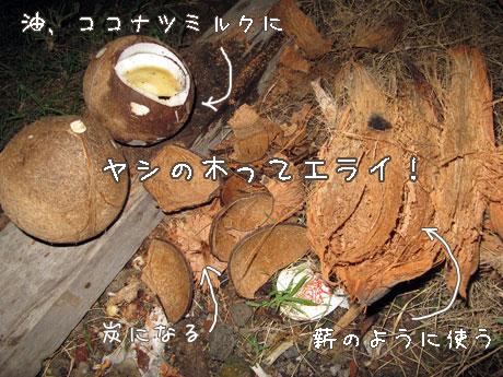 20111129-4.jpg