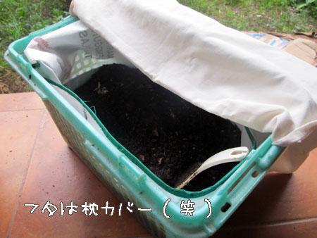 20120114-6.jpg