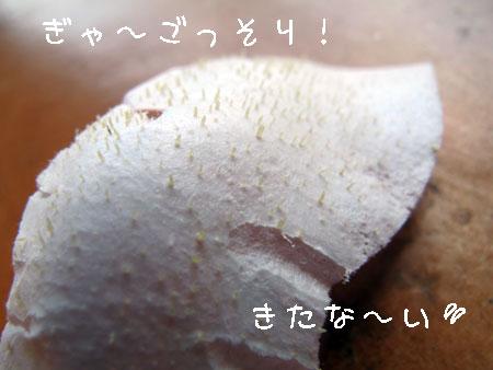 20120906-4.jpg